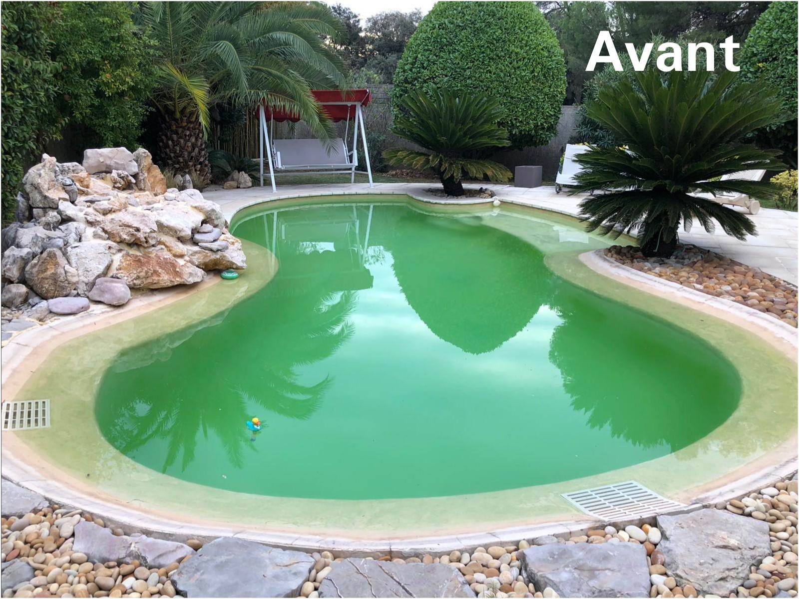 piscine avec eau verte et sale